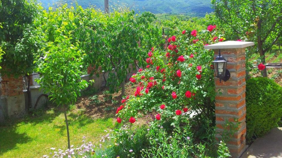 Къща за гости около София – Каза Роза – Двор – Осветление